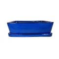 Bonsai + plato 37 cm, Azul