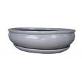 Bonsai + plato 26.5 cm, Blanco