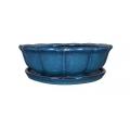 Bonsai 14 cm, Azul Mar