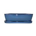 Bonsai + plato 20.5 cm, Azul