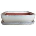 Maceta Bonsai + plato set/2 Beige